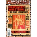 SPIDER MAN'S TANGLED WEB N.14
